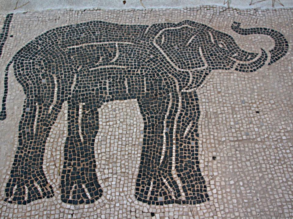 Particolare del mosaico della stanza 28