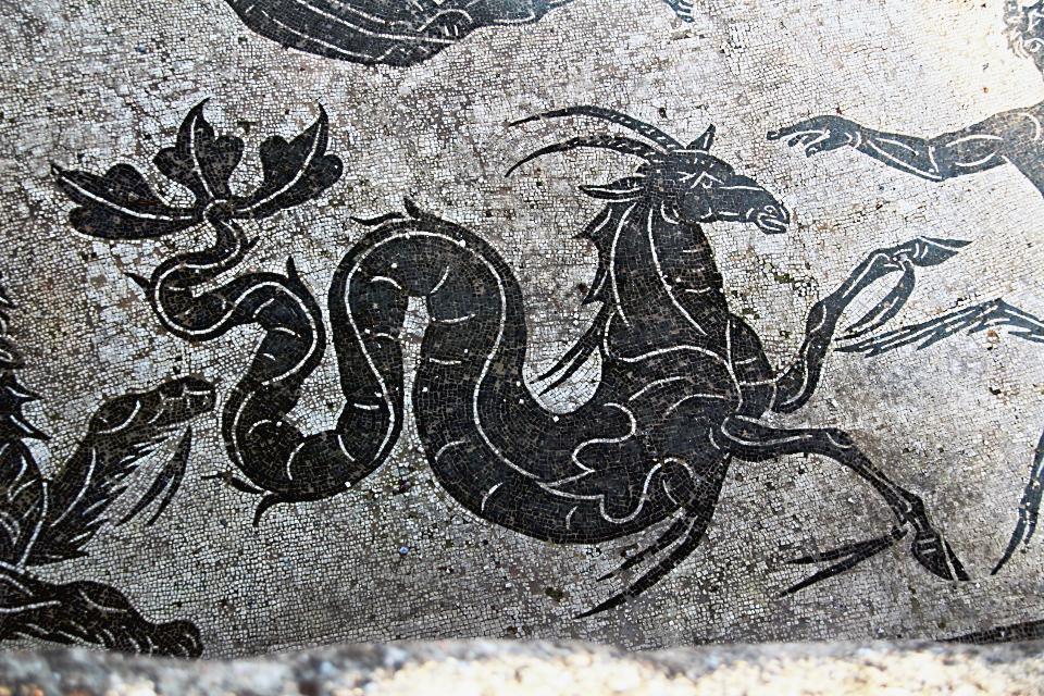 0202 Ostia - Terme di Nettuno - Mosiak - Neptun - Detail Gazelle-Steinbock Raum 4