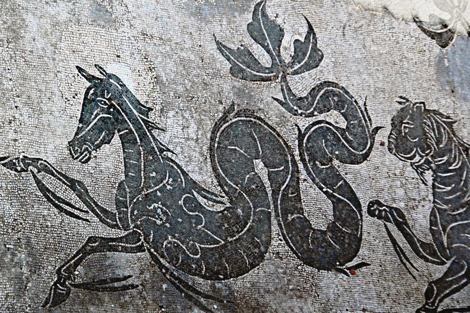 0203 Ostia - Terme di Nettuno - Mosiak - Neptun - Detail Hippokamp - Raum 4