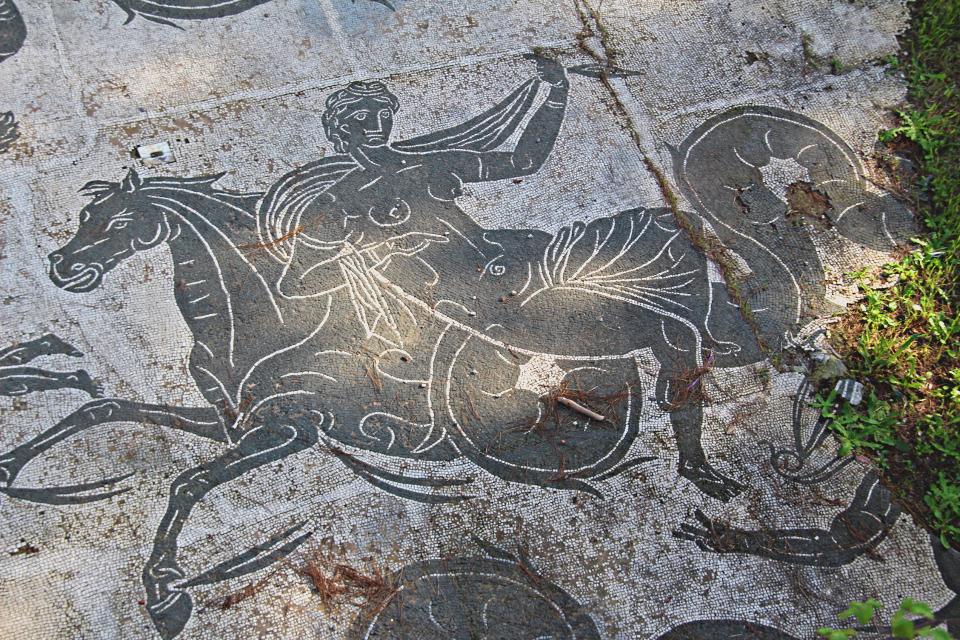 Anfitrite che cavalca un ippocampo Mosaico di Nettuno, Ostia Antica