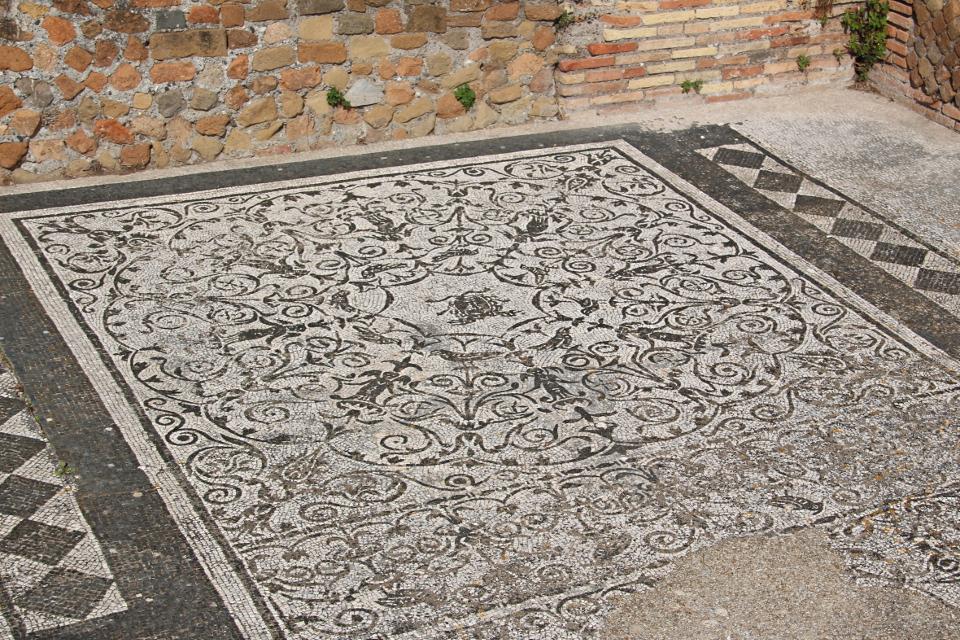Il mosaico della Medusa