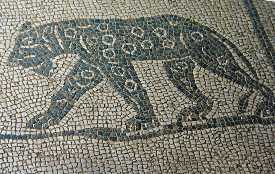 Particolare del mosaico dell'ambiente E